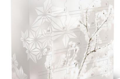 Dr. Hauschka Beauty Adventskalender 2015 Naturkosmetik